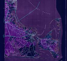 Massachusetts  USGS Historical Topo Map MA Edgartown 351665 1944 31680 Inverted by wetdryvac
