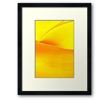 Study in Yellow: Agave Framed Print