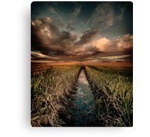 Irrigation ditch Canvas Print