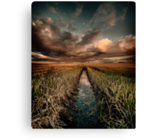 Irrigation ditch Canvas Print