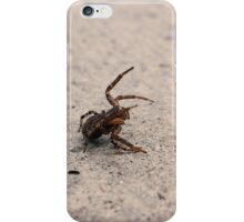 I Stand in Defiance of You iPhone Case/Skin