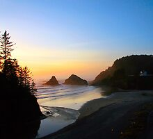 Heceta Head Beach and Lighthouse by Kathleen Jones