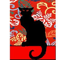 Black Cat on red wallpaper Photographic Print