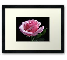 Simplistic Beauty Featured Photo Framed Print