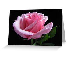 Simplistic Beauty Featured Photo Greeting Card