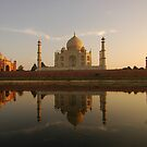 Taj Mahal Reflection by Stephen Tapply