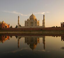 Taj Mahal Reflection by Stephen Tapply