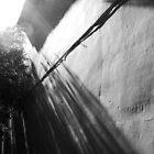 Shadowlands by ragman