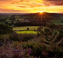 Dorset Sunrise by Rob Lodge