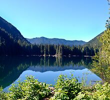 Lena Lake, Olympic National Forest,WA by Kimberly Deverell