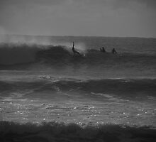 Surf Spectators Get Schooled by Jason Lee Jodoin