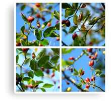 Rosehips - Polyptych Canvas Print
