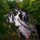 Swallow Falls by Mark Dobson