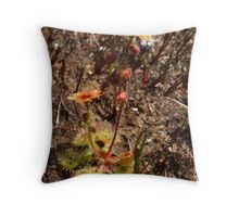 Scarlet Sundew Throw Pillow