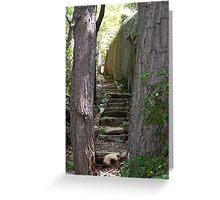 Rock Steps Greeting Card