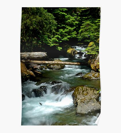 Flowing Water - Lena Lake, Olympic National Forest WA Poster