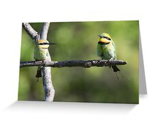 ''Rainbow Bee-eaters'' Greeting Card