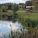 Winebark Lake by teresa731