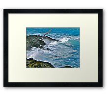 Lighthouse Cove, Brier Island Framed Print