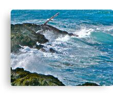 Lighthouse Cove, Brier Island Canvas Print