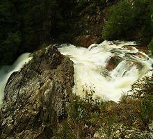 Stitt Falls, Rosebery by michellerena