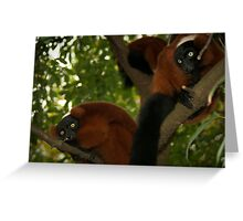 Piercing eyes looking down - Doordringende ogen van boven Greeting Card