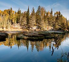 Sunrise at the beaver dam by Beth Wold
