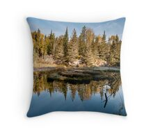 Sunrise at the beaver dam Throw Pillow