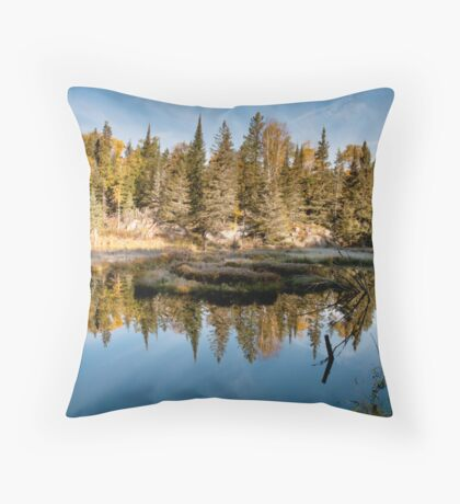 Sunrise at the beaver dam Throw Pillow