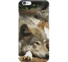 Timber Wolf Chilling Out iPhone Case/Skin