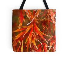 Autumn's bounty (Fractalius) Tote Bag