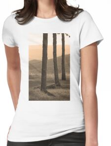 Blue Ridge Mountains, Virginia Womens Fitted T-Shirt