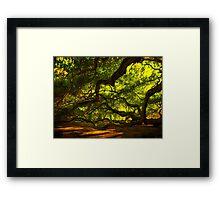 Side arms of the Angel Oak in Charleston Framed Print