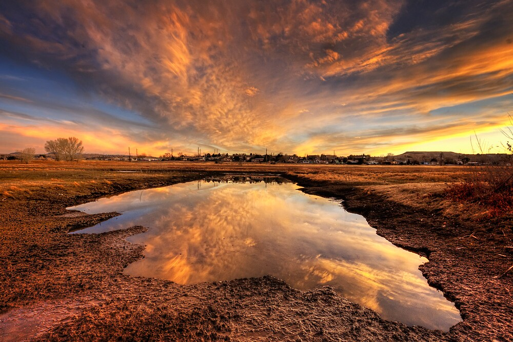 Now That's A Puddle!* by Bob Larson