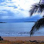 Bocas Del Toro Beach by Al Bourassa