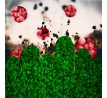 Pixel Berries Photographic Print