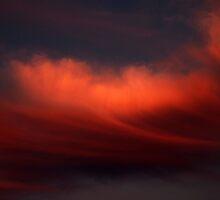 Cloud of Dreams by Steve Hildebrandt