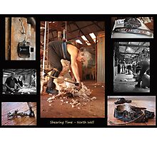 Shearing Time Photographic Print