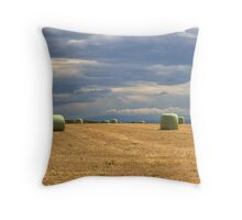 Just packed Throw Pillow