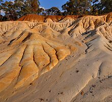 Erosion Dunes by Peter Hammer