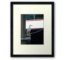 Heron Looking For Fish At Marina Framed Print