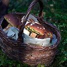 Magical Mushrooms by Lisa McCartney