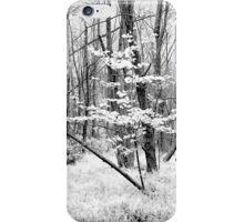 White Grass iPhone Case/Skin