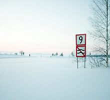 Finnish Lake by Lisa McCartney