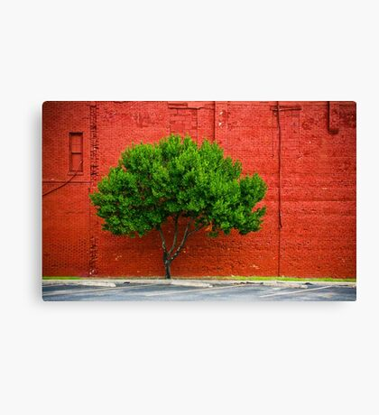 Urban Life Canvas Print