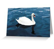 White swan on blue lake Greeting Card