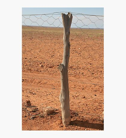 The Dog-fence,S.A. Photographic Print