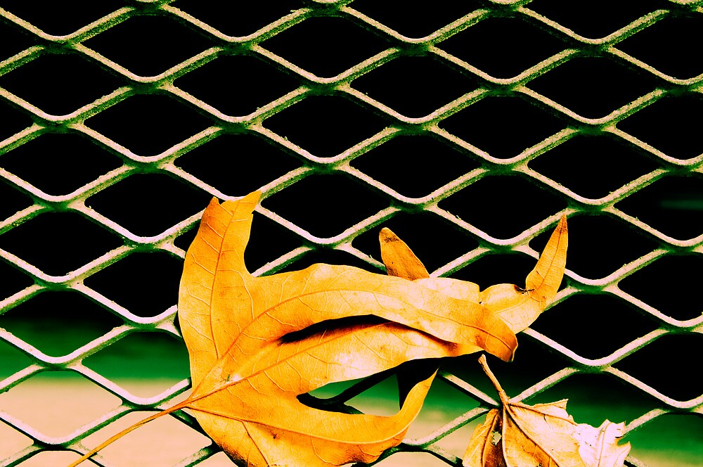 On The Outside by Derek Kan