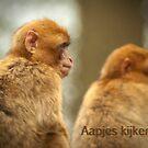 """Primaten - """"Aapjes kijken""""  by steppeland"""