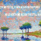 BESIDE THE STILL WATERS by Matthew Scotland